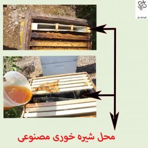 فروش انواع عسل طبیعی