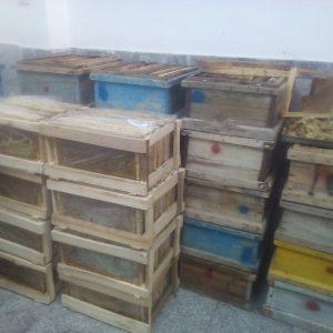 خریدوفروش عسل طبیعی